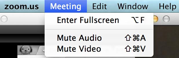 full screen active speaker mode